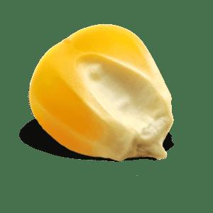 CornReclame websites en meer